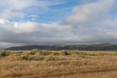 Het berijden door IJsland Royalty-vrije Stock Foto's