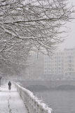 Het berijden onder de sneeuw Stock Foto