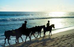 Het berijden op het strand royalty-vrije stock foto's