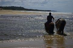 Het berijden op het strand Stock Foto