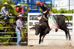 Het berijden van de cowboy gevaarlijke stier op rodeo Royalty-vrije Stock Foto