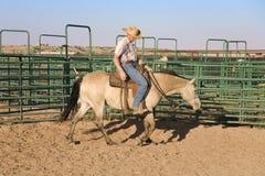 Het berijden van de cowboy paard Stock Foto's