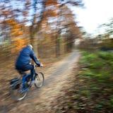 Het berijden van de fiets in een stadspark Stock Foto