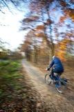 Het berijden van de fiets in een stadspark Stock Afbeelding