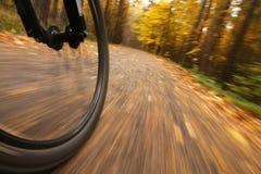 Het berijden van de fiets, het lage onduidelijke beeld van de hoekmotie Stock Foto