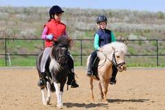 Het berijden van de jongen en van het meisje poneys stock fotografie
