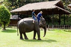 Het berijden van de olifant Royalty-vrije Stock Fotografie