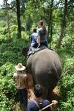 Het berijden van de olifant in Thailand Stock Foto's