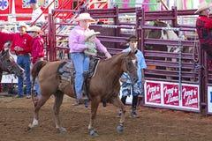 Het berijden van de papa en van de zoon paard. Stock Fotografie