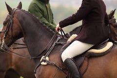 Het berijden van de vrouw paard 1 Stock Foto's