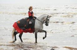 Het berijden van de vrouw paard in overzees royalty-vrije stock afbeelding
