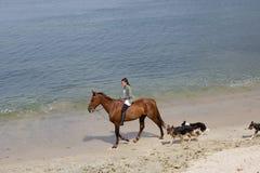 Het berijden van een paard stock foto