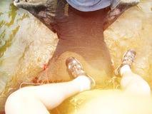 Het berijden van olifant in water selfie hoogste mening Royalty-vrije Stock Foto