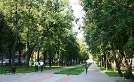 Het beroemde stadspark in Nizhny Novgorod Stock Foto