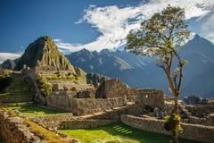 Het beroemdste beeld van Peru - Machu Picchu Royalty-vrije Stock Foto