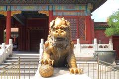 Het beschermen van leeuw in China Stock Afbeelding