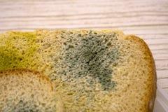 Het beschimmelde brood, verliep kan niet any more eten Geïsoleerdj op witte achtergrond stock foto's