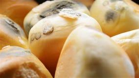 Het beschimmelde broodjes roteren stock videobeelden