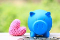 Het besparingsgeld voor treft voortaan voorbereidingen en investeringsconcept, Blauw spaarvarken met roze hart op natuurlijke gro stock afbeeldingen