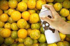 Het bespuiten van giftige chemische producten in de sinaasappelen Royalty-vrije Stock Fotografie