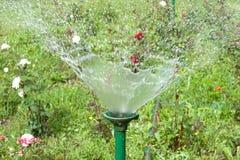 Het bespuiten van het water Stock Foto