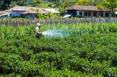 Het bespuitende pesticide van de landbouwer op zijn gebied Stock Foto