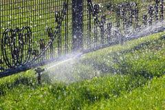 Het bespuitende water van de gazonsproeier over groene gras en metaalomheining Stock Foto