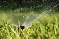 Het bespuitende water van de sproeier Stock Fotografie