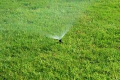 Het bespuitende water van de sproeier op gras Royalty-vrije Stock Foto