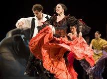 Het beste Drama van de Dans van het Flamenco   Stock Foto