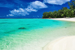 Het beste zwemmende strand met palmen op tropische Cook Islands Stock Fotografie