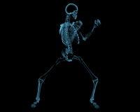 Het bestrijden van skelet (3D xray blauwe transparant) Stock Afbeeldingen