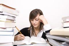 Het bestuderen van meisje Stock Foto's