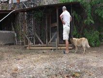 Het bevestigen van een hondpen in de Caraïben stock video