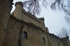 Het bevoorrechte Meningssajazarra Kasteel bewaarde spectaculair Zijschot Architectuur, Kunst, Geschiedenis, Reis stock fotografie