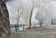 Het bevriezen op bomen en struiken dichtbij de brug royalty-vrije stock afbeeldingen