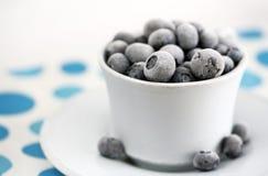 Het bevroren dessert van de zomer, blueber Royalty-vrije Stock Foto