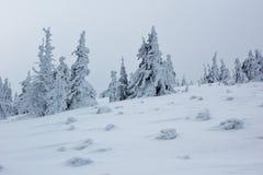 Het bevroren landschap van de de winterberg in extreme koude voorwaarden Stock Afbeeldingen