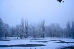 Het bevroren meer van de winter landschap Stock Afbeelding