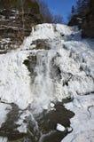 Het bevroren vooraanzicht van Hector Falls Stock Foto