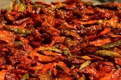 Het bewaren van Spaanse pepers Stock Foto's