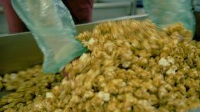 Het bewegen van popcorn tijdens het koken op de fabriek stock videobeelden