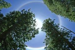 Het Bewijsmateriaal van het UFO Royalty-vrije Stock Foto