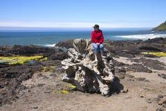 Het bezoeken van Kaap Perpetua, de kust van Oregon. Stock Afbeelding