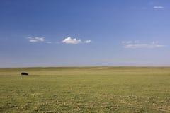 Het bezoeken van Nationale Weide Pawnee Stock Afbeeldingen