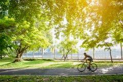 het bicycling in parkstad Royalty-vrije Stock Afbeelding