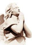 Het bidden engel in sepia geïsoleerde tonen Stock Foto's