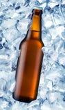 Het bier van de fles Stock Afbeeldingen