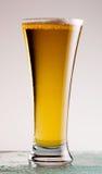 Het Bier van het lagerbier stock foto's