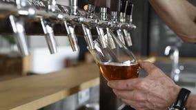 Het bier van Pouing in glas stock footage